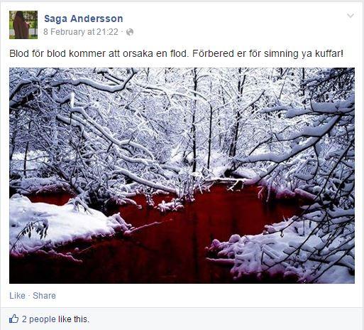 saga andersson 6