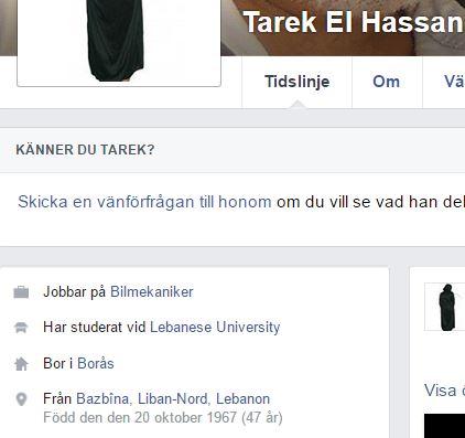 Tarek Borås1