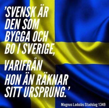 """""""Svensk är den som bygga och bo i sverige, varifrån hon än räknar sitt ursprung"""" bild"""