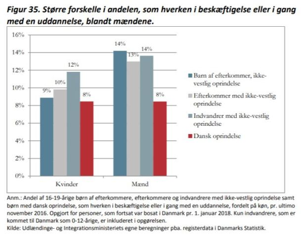 Ny dansk rapport om hur andra och tredje generationen invandrarbarn hardet