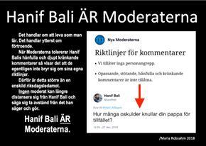 Nya Moderaterna bär ansvar för vad Hanif Bali vräker ursig!